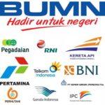 Pengumuman Pendaftaran BUMN Prioritaskan Tenaga IT, Akuntan dan Manajemen